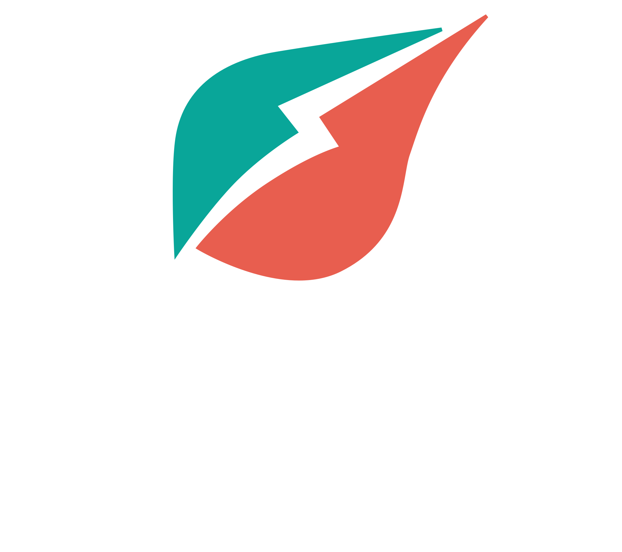 Wexus Logo Verticle light-1.png
